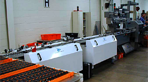 Manual Loading and Product Staging Conveyors with Wrapper Infeed