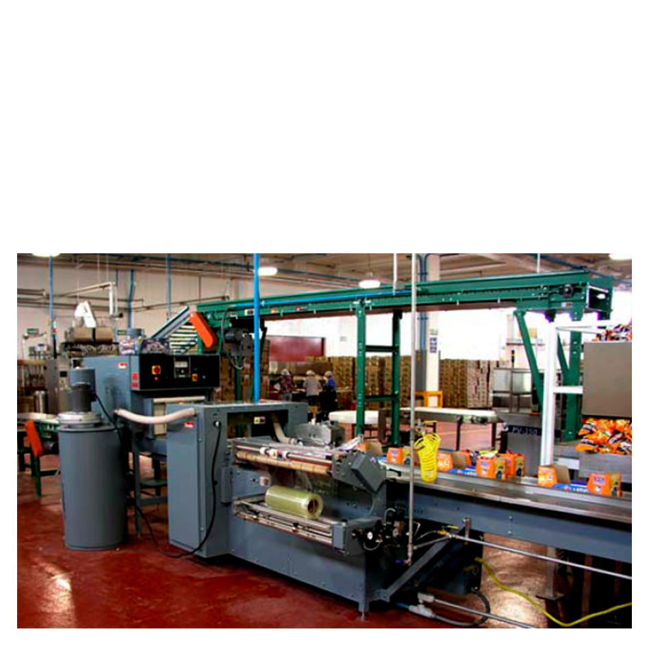 Lugged Conveyor to Shrink Film Overwrapper
