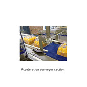 Arpac Brandpac BPTW-5000 Tray Bundler Acceleration Conveyor Section