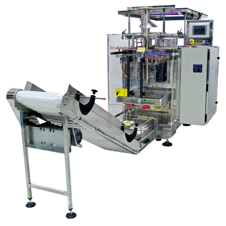 Hayssen Sandiacre Aura LD VFFS Bagging System