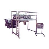 Weigh Right FCS Series Fresh-Cut Vegetable Filler with Mezzanine